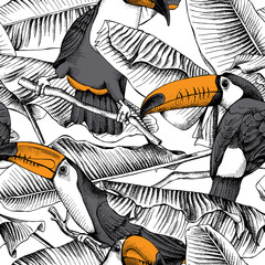 Seamless pattern with image of a Toucan and Banana leaves. Vector illustration.