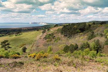 Mottistone Common looking towards The Needles, Isle of Wight