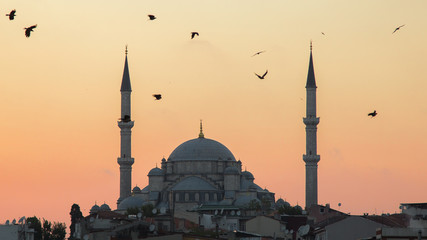 Fatih Camii (Conqueror's Mosque) in Istanbul, Turkey. Dusk, Birds fly in silhouettes.
