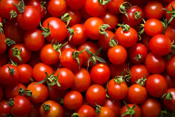 Little red cherry tomatoes nature background.