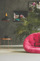 Room with armchair and plant decoration