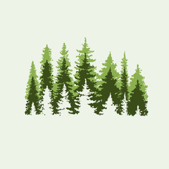 Spruce forest. Green and beige colors. Vector illustration.