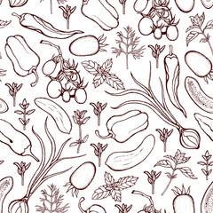 Seamless pattern with tomatoes, peppers, onions, cucumbers, basil, dill, thyme. Background with vegetables and spicy herbs. Hand drawn. Vector illustration.