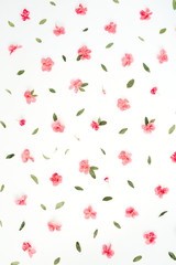 Floral pattern made of pink hydrangea flowers, green leaves, branches on white background. Flat lay, top view. Floral background. Pattern of flowers.