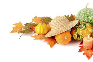 mini pumpkins on isolated white background. Halloween.