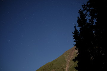 Starry sky in the mountains and forest