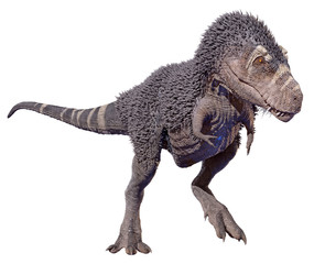 A 3D rendering of Tyrannosaurus Rex walking, isolated on a white background.