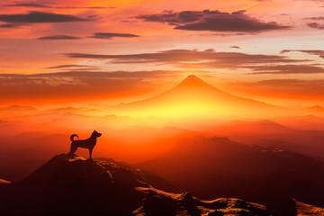 富士山の日の出と犬のシルエット