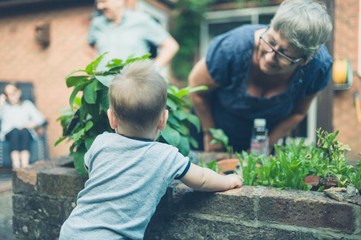 Baby looking at grandmother in garden