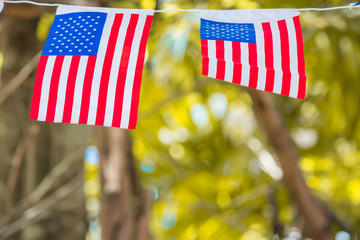 American (USA) flag waving isolated on autumn nature background