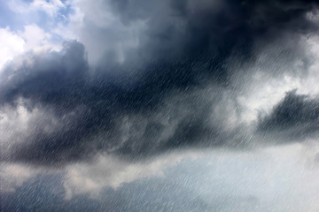 Rain Fototapete