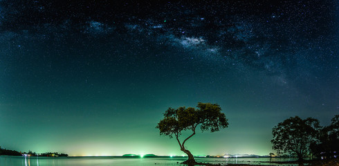 Wall Mural - Landscape with Milky way galaxy. Night sky with stars and silhouette mangrove tree in sea. Long exposure photograph.