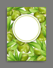 Vector illustration with green olives and leaf isolation on the white background, frame.   Element for modern design, advertising for sales, template,banner, flyer, brochure for the promotion