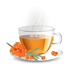 Sea buckthorn tea in transparent glass cup with haze, vector illustration for package design
