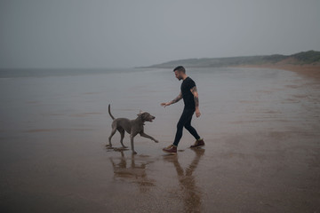 Man and Dog Playing