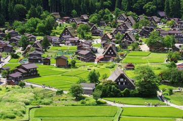 Fotorolgordijn Japan Shirakawago in Hida Japan, Gassho-Zukuri Village 白川郷 飛騨の夏
