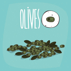 Set of isolated plant Olives fruits herb with leaves, Simple round icon of Olea europaea on white background, Lettering inscription Olives