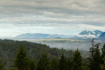 Tofino, British Columbia Landscape Wall mural