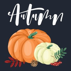 Hand drawn illustration with pumpkin and lettering.