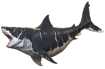 3D rendering of Megalodon isolated on a white background..