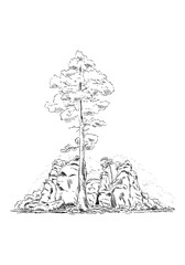 rock with trees