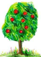 Яблоня с яблоками на поляне. Акварель