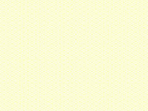 パターンCO00209/薄くスライスしたレモンの表面をイメージしたパターン。キュート×しっかり。