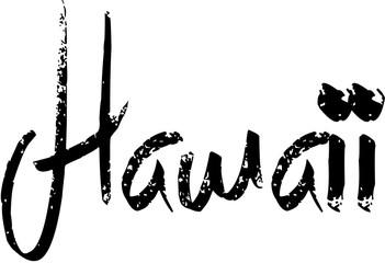 Hawaii text sign illustration