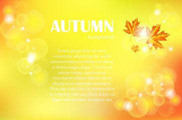 Autumn background. Vector illustration EPS10