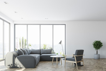White living room interior with a gray sofa, front