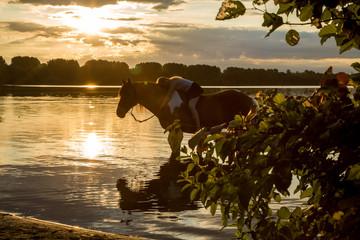 Reiterin im Sonnenaufgang im See
