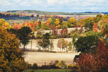 Landscape of fall colored trees and harvested fields