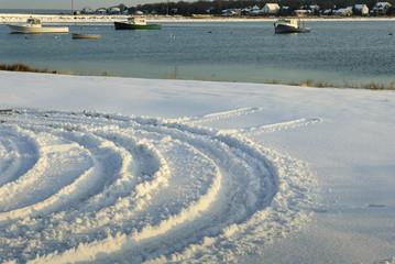 Tracks in new snow