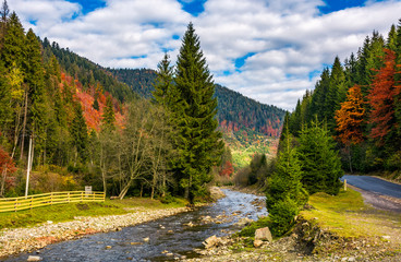 river in autumnal countryside with spruce forest