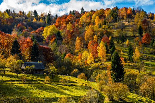 abandoned wooden house in autumn on hillside