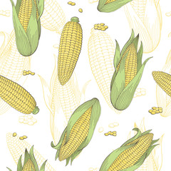 Corn graphic color seamless pattern sketch illustration vector