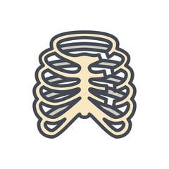 Broken Bones Human Body Colored Icon ribs