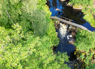 Swedish forest brook - aerial view