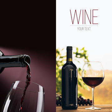 Excellent wine tasting