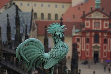 プラハ城のニワトリ