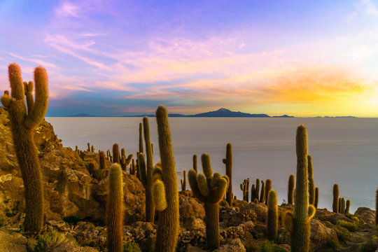 View on Sunset on Incahuasi island by Uyuni lake in Bolivia