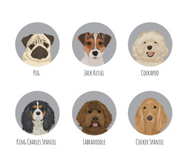 Pet dog breed round badge stickers