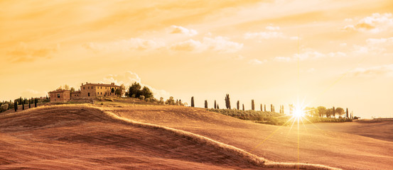 Poster Toscane Beautiful typical panorama landscape of Tuscany at sunset, Italy