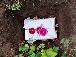 Haustier Grab im Garten