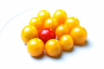 Gelbe Tomaten und eine rote Tomate
