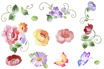 Set watercolor floral elements - leaves and flowers in vector. Isolated on the white background, easy editable and great for floral compositions.Design for invitation, wedding or greeting cards