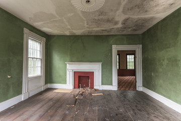 Green interior of an abandoned house