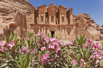 Petra The Monastery pink flowers