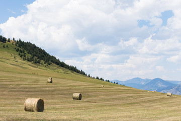 Large round hay bales on a hillside that has been harvested. Blue mountains are in the distance and blue sky with cumulus clouds are above.