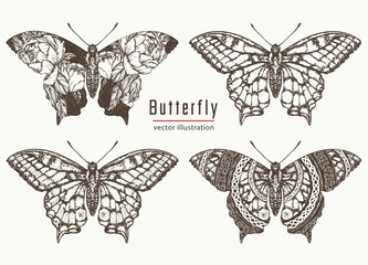 Butterfly hand drawn collection. Realistic butterfly tattoo and t-shirt design. Beautiful Swallowtail boho t-shirt design. Mystical esoteric symbol of freedom, travel, tourism